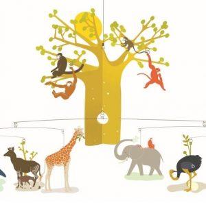 Mobiel Afrikaanse savanne, Djeco