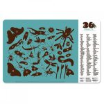 Placemat insecten, Crocodile Creek
