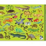 Placemat reptielen, Crocodile Creek